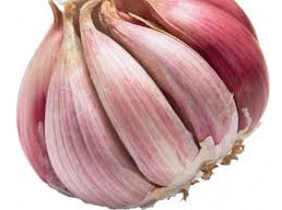 Garlic the wonder food