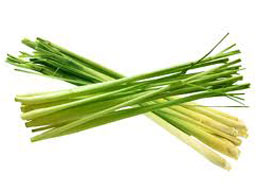 Lemon grass Full of flavour