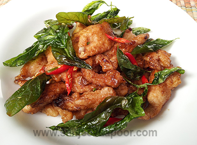 Stir Fried Chicken With Basil And Chilli